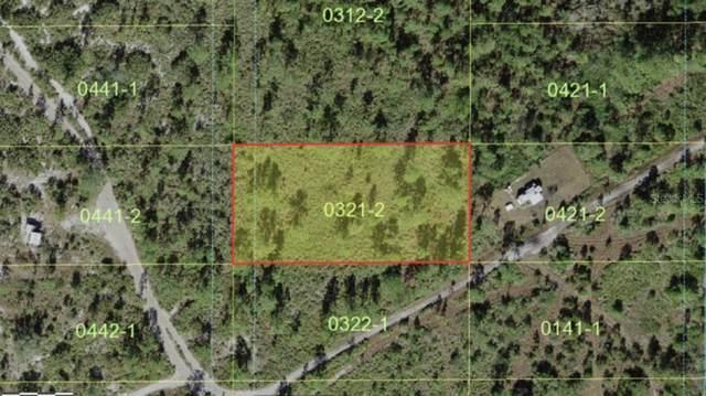 Holopaw Groves Road, Saint Cloud, FL 34773 (MLS #A4506125) :: Zarghami Group