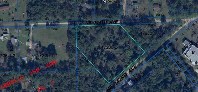 13901 NE 142ND Street, Waldo, FL 32694 (MLS #A4506210) :: The Kardosh Team