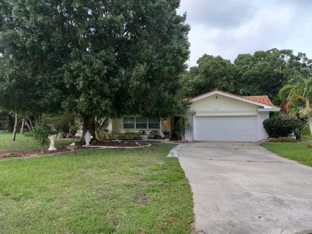 3617 White Sulphur Place, Sarasota, FL 34232 (MLS #A4506248) :: CARE - Calhoun & Associates Real Estate