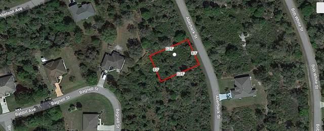 Aberback Street, North Port, FL 34291 (MLS #A4506326) :: Cartwright Realty
