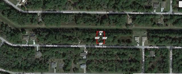 Shaffer Avenue, North Port, FL 34291 (MLS #A4506357) :: Zarghami Group