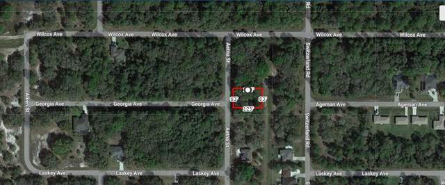 Aetna Street, North Port, FL 34288 (MLS #A4506590) :: The Paxton Group