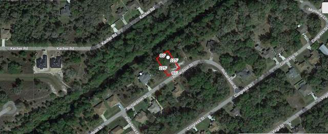 Richardson Street, North Port, FL 34288 (MLS #A4506600) :: Zarghami Group