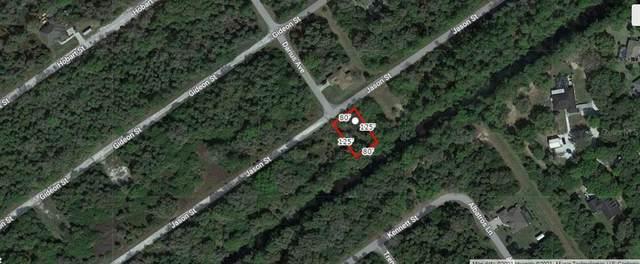 Jason Street, North Port, FL 34288 (MLS #A4506604) :: Vacasa Real Estate