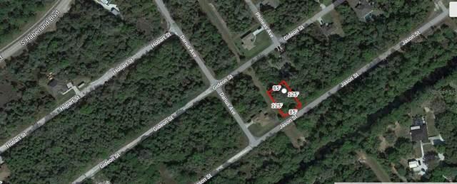 Jason Street, North Port, FL 34288 (MLS #A4506609) :: Vacasa Real Estate