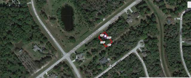 Tropicaire Boulevard, North Port, FL 34291 (MLS #A4506667) :: Cartwright Realty