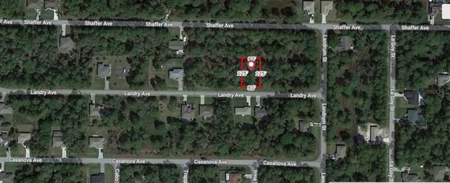 Landry Avenue, North Port, FL 34291 (MLS #A4506736) :: Lockhart & Walseth Team, Realtors