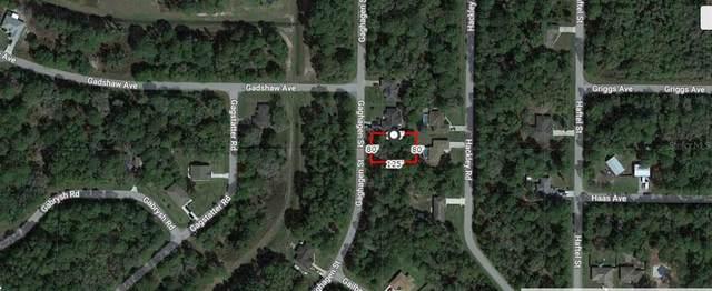 Gaghagen Street, North Port, FL 34291 (MLS #A4506766) :: Cartwright Realty