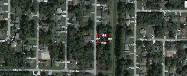 Belvidere Street, North Port, FL 34286 (MLS #A4506804) :: Lockhart & Walseth Team, Realtors