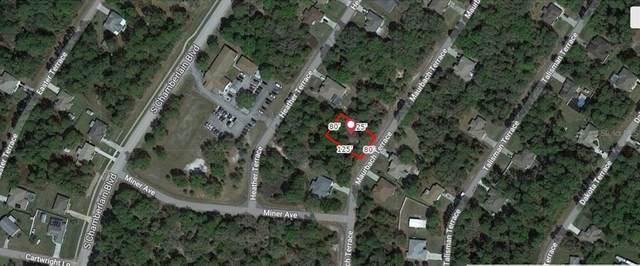 Maurbach Terrace, North Port, FL 34286 (MLS #A4506810) :: Cartwright Realty