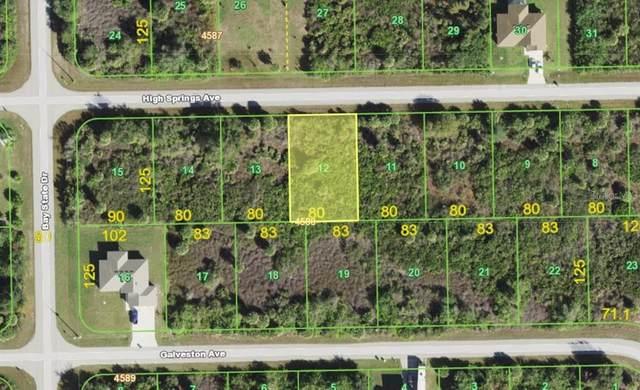 13395 High Springs Avenue, Port Charlotte, FL 33981 (MLS #A4506902) :: The BRC Group, LLC