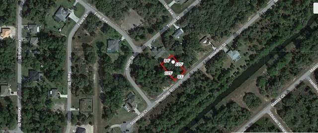 Snowdrop Street, North Port, FL 34288 (MLS #A4506930) :: RE/MAX Elite Realty