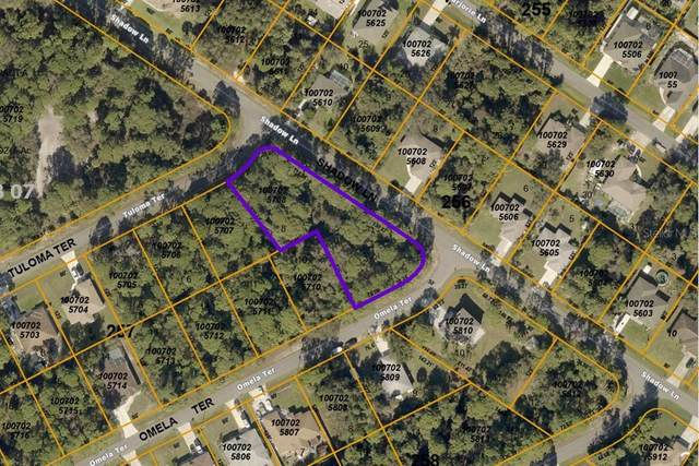 Shadow Lane, North Port, FL 34286 (MLS #A4507054) :: Cartwright Realty