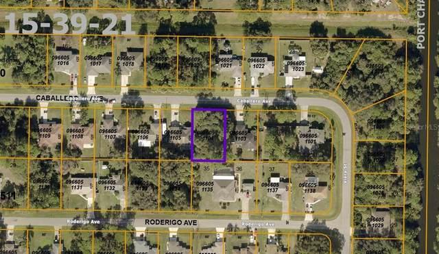 Caballero Avenue, North Port, FL 34286 (MLS #A4507055) :: Team Turner