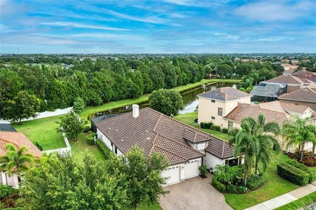 14807 Bowfin Terrace, Lakewood Ranch, FL 34202 (MLS #A4507247) :: Zarghami Group