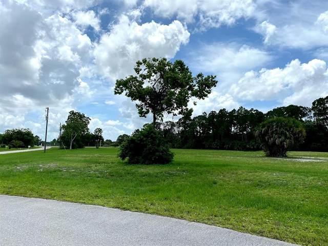 24489 Wallaby Lane, Punta Gorda, FL 33955 (MLS #A4507261) :: Zarghami Group