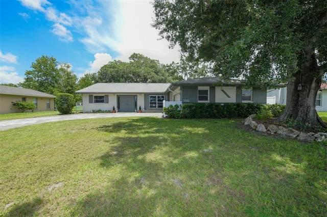 7321 Connecticut Avenue, Sarasota, FL 34243 (MLS #A4507267) :: Zarghami Group