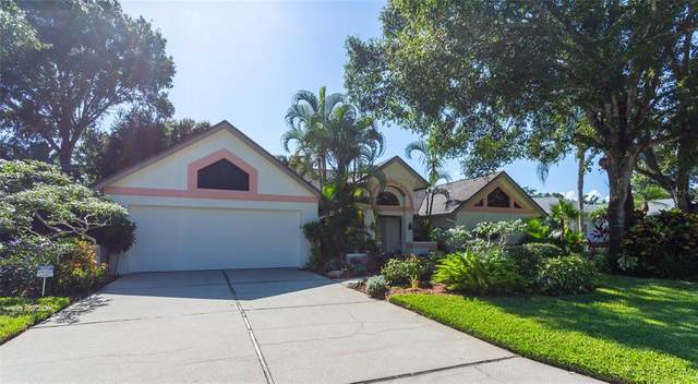 8158 Misty Oaks Boulevard, Sarasota, FL 34243 (MLS #A4507348) :: Zarghami Group