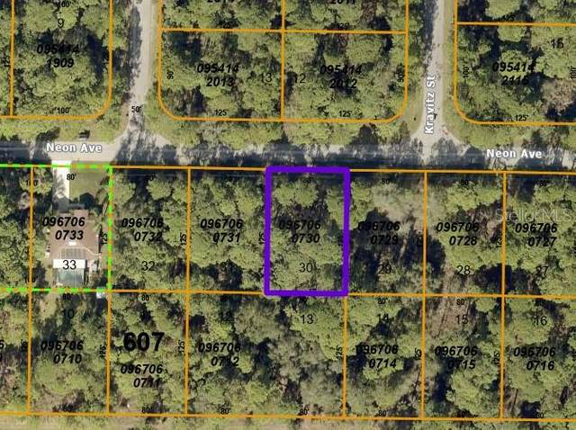Neon Avenue, North Port, FL 34291 (MLS #A4507356) :: Keller Williams Realty Select