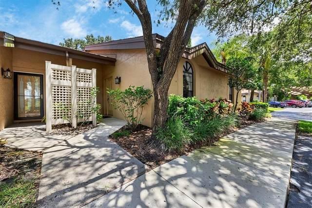 4517 Morningside #5, Sarasota, FL 34235 (MLS #A4507395) :: Realty Executives