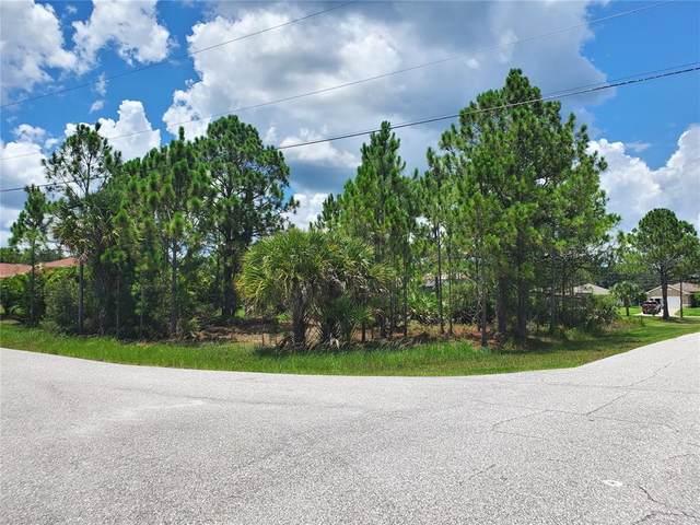 Schoen Street, North Port, FL 34291 (MLS #A4507484) :: Gate Arty & the Group - Keller Williams Realty Smart