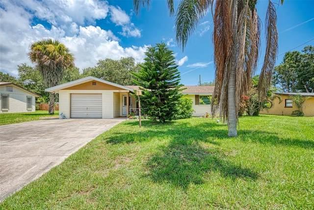 461 Magnolia Road, Venice, FL 34293 (MLS #A4507498) :: Cartwright Realty