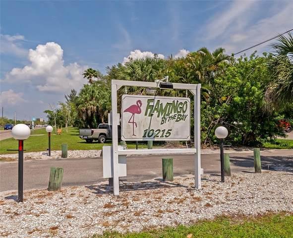 10215 Manatee Avenue W #9, Bradenton, FL 34209 (MLS #A4507531) :: Zarghami Group