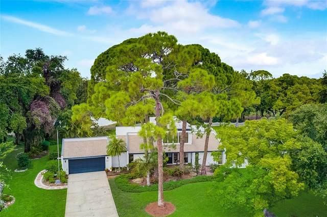4112 Pinar Drive, Bradenton, FL 34210 (MLS #A4507548) :: Premium Properties Real Estate Services