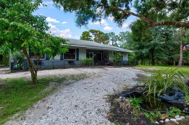 7125 Verna Bethany Road, Myakka City, FL 34251 (MLS #A4507582) :: Cartwright Realty