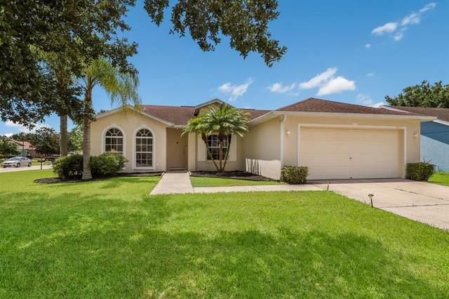 11855 Shrewsbury Lane, Parrish, FL 34219 (MLS #A4507584) :: GO Realty