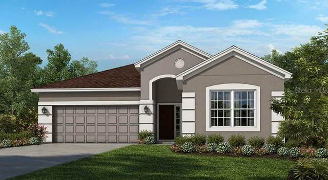 2366 Hickory Grove Street, Clermont, FL 34715 (MLS #A4507641) :: CGY Realty