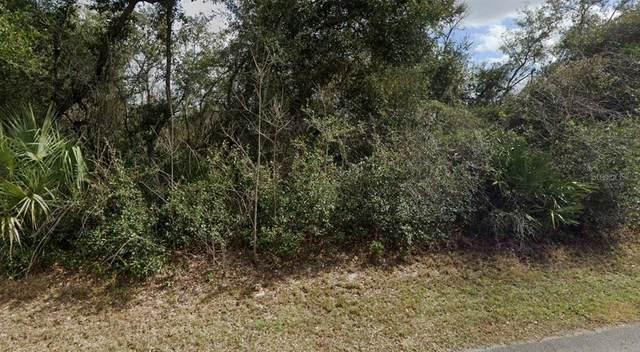 113 Cardinal Drive, Debary, FL 32713 (MLS #A4507645) :: Zarghami Group
