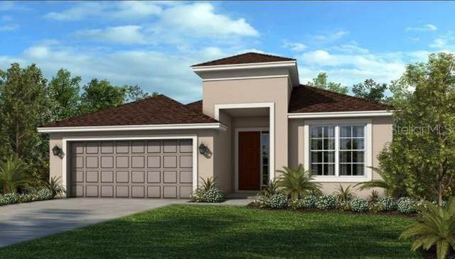 2328 Red Ash Way, Clermont, FL 34715 (MLS #A4507646) :: Vacasa Real Estate