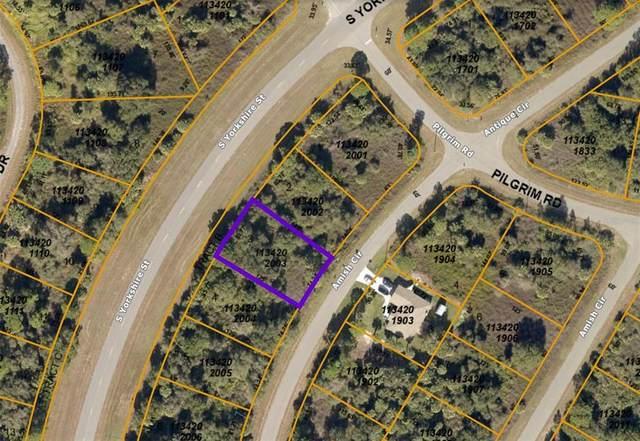 1134202003 Amish Circle, North Port, FL 34288 (MLS #A4507654) :: Burwell Real Estate