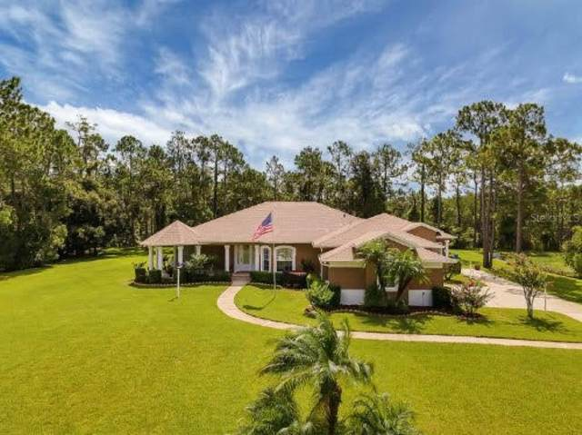 12177 Gray Birch Circle, Orlando, FL 32832 (MLS #A4507658) :: CENTURY 21 OneBlue