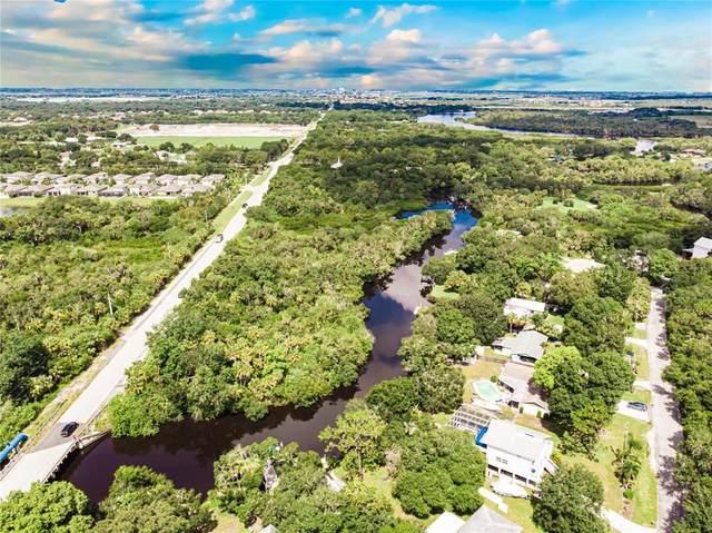 12821 Upper Manatee River Road, Bradenton, FL 34212 (MLS #A4507675) :: CARE - Calhoun & Associates Real Estate