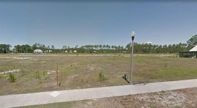 107 St Christopher Street, MEXICO BEACH, FL 32456 (MLS #A4507724) :: Zarghami Group