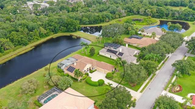 10033 Cherry Hills Avenue Circle, Bradenton, FL 34202 (MLS #A4507734) :: Gate Arty & the Group - Keller Williams Realty Smart