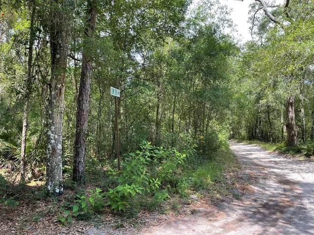 12428 SW 38TH TERRACE, Webster, FL 33597 (MLS #A4507759) :: Dalton Wade Real Estate Group