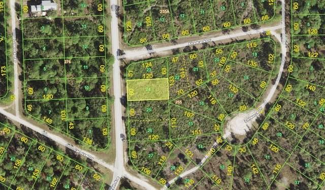 13342 Path Avenue, Punta Gorda, FL 33955 (MLS #A4507767) :: MavRealty