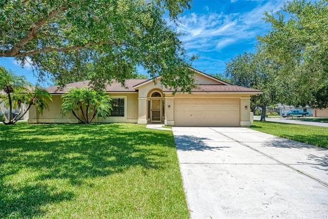 6215 65TH PL E, Palmetto, FL 34221 (MLS #A4507785) :: Keller Williams Realty Select