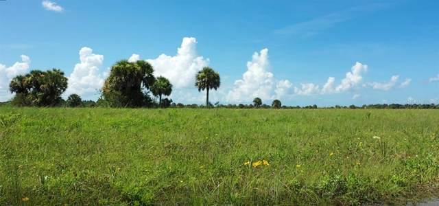 14413 Barracuda Road, Placida, FL 33946 (MLS #A4507936) :: The BRC Group, LLC