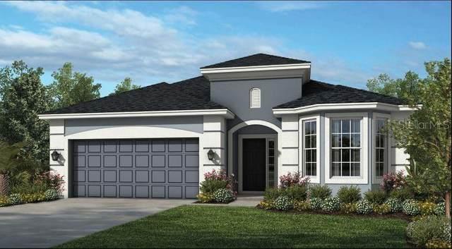 1282 Pando Loop, Orlando, FL 32824 (MLS #A4508006) :: Everlane Realty
