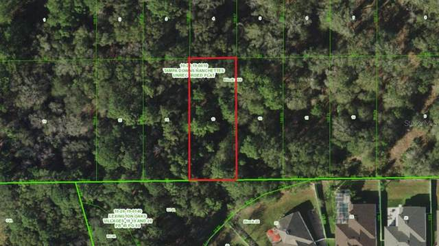 Unnasigned, Wesley Chapel, FL 33544 (MLS #A4508007) :: Zarghami Group