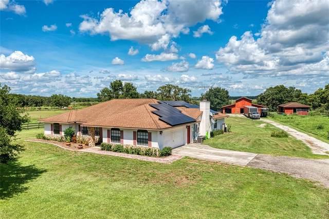 14555 Mossy Hammock Lane, Myakka City, FL 34251 (MLS #A4508053) :: Cartwright Realty