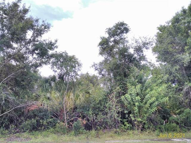 27179 Punta Cabello Court, Punta Gorda, FL 33983 (MLS #A4508125) :: Bob Paulson with Vylla Home