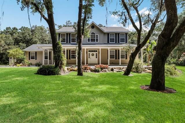 3810 33RD Street E, Palmetto, FL 34221 (MLS #A4508194) :: Vacasa Real Estate