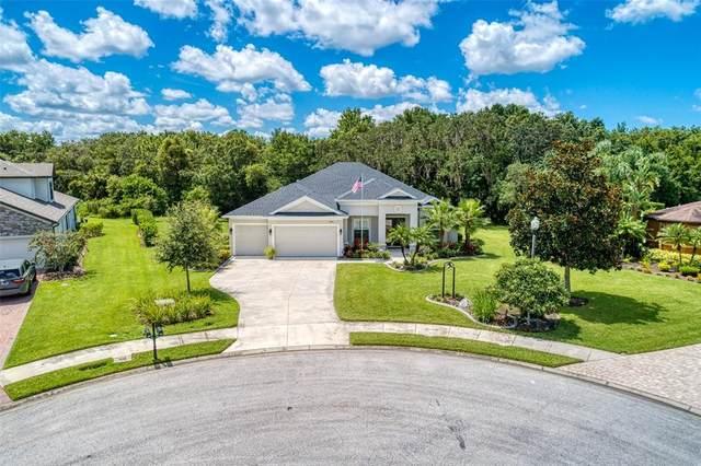3002 157TH Terrace E, Parrish, FL 34219 (MLS #A4508212) :: Vacasa Real Estate