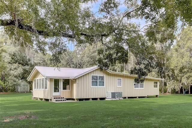 1816 Zipperer Road, Bradenton, FL 34212 (MLS #A4508214) :: Bob Paulson with Vylla Home