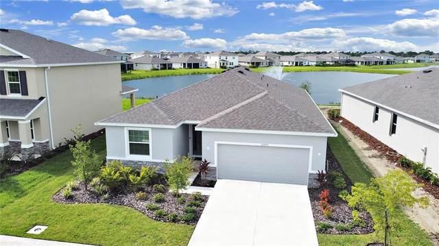 12572 Night View Drive, Sarasota, FL 34238 (MLS #A4508221) :: Vacasa Real Estate